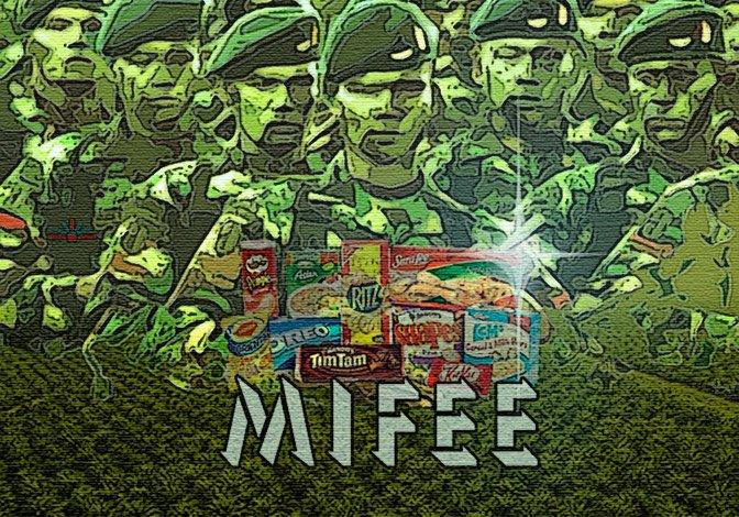 MIFEE-racist-land-grab